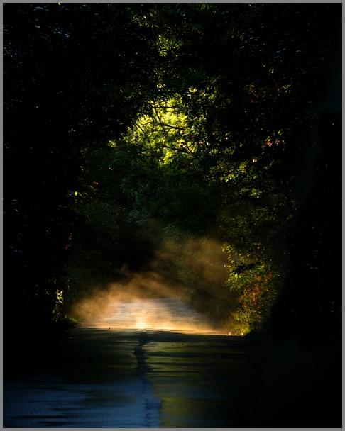 światłość W Ciemności świecidroga Do