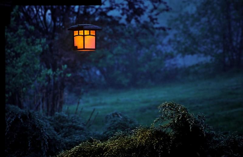 Lampy Solarne Jako Oświetlenie Ogrodu Elbląg